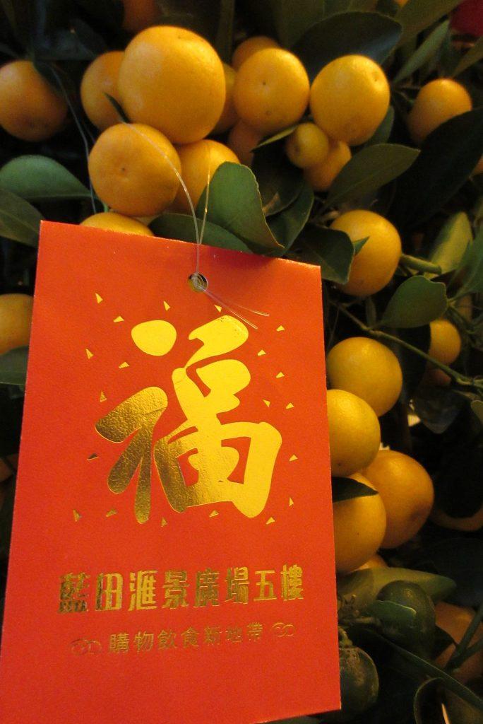 GOOD FORTUNE FRUIT - 年桔